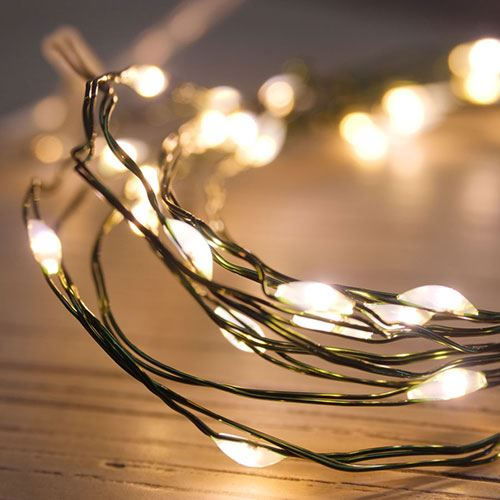 Green LED String Lights - 40 LED