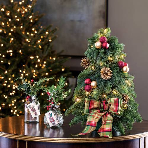 Home For Christmas Cut Evergreen Centerpiece