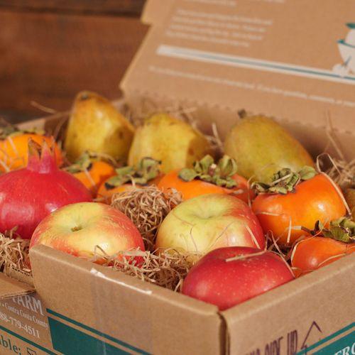 Holiday Mixed Fruit Gift Box