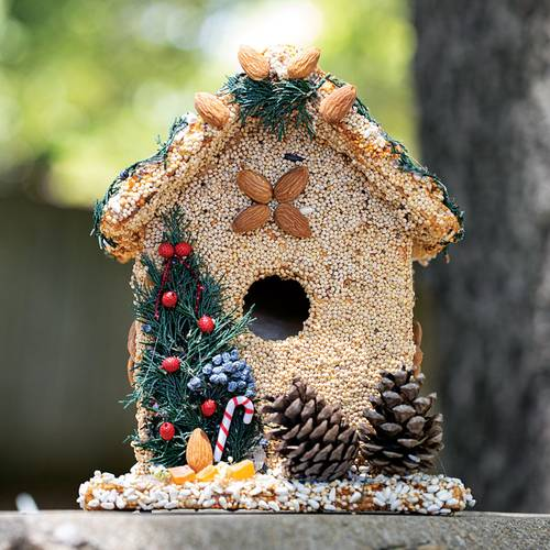Birdseed House