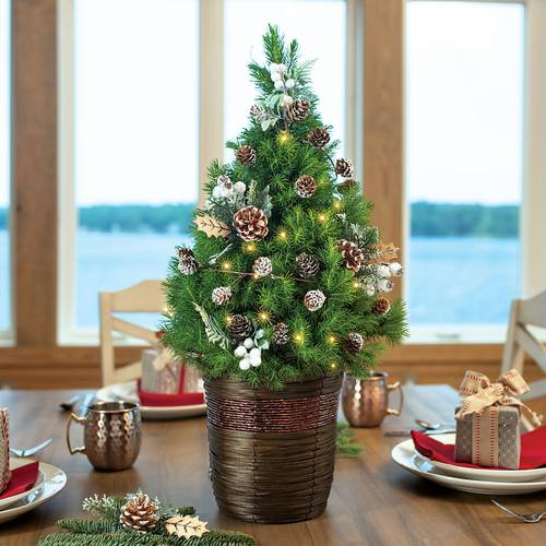 Winter Woods Tree