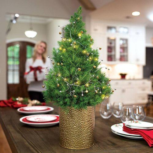 Holiday Delight Tree