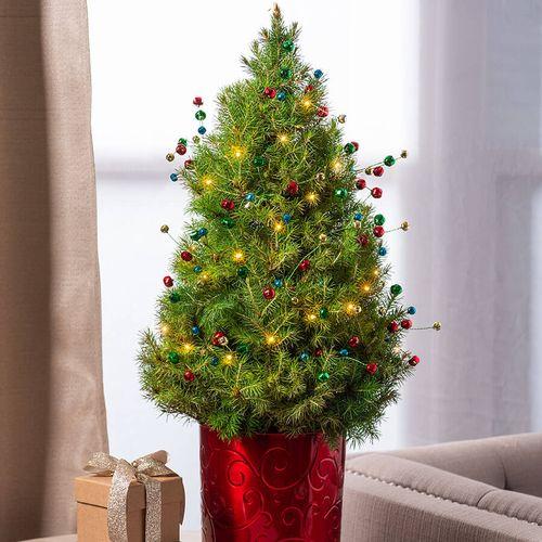 Holiday Jingle Tree