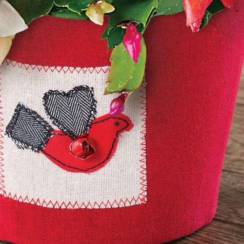 Lovebird Candy Cane Cactus