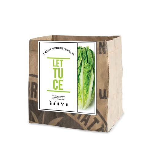 Lettuce Vegetable Garden Grow Kit