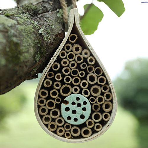 Dew Drop Bee & Bug Hotel