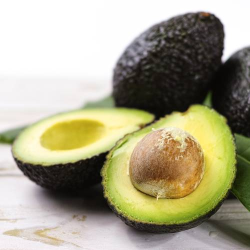 Persea Avocado Hass