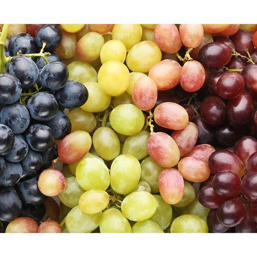 Grape Trio