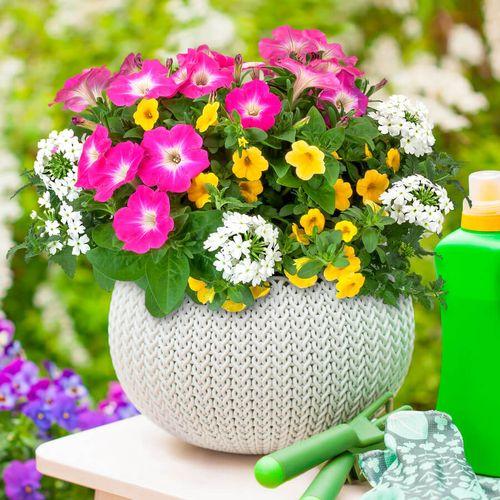 Blooming Block Kwik Kombos™ Chloe's™