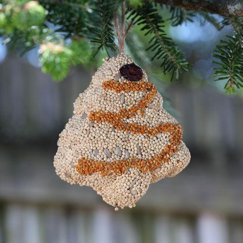Christmas Birdseed Ornaments, Set of 3
