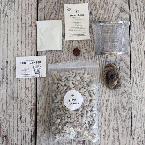 Eco-Planter - Cilantro