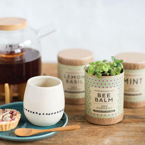 Tea Herbs Seed Starter Kit - 3PK