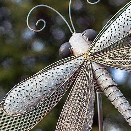 Iron Dragonfly Garden Pick