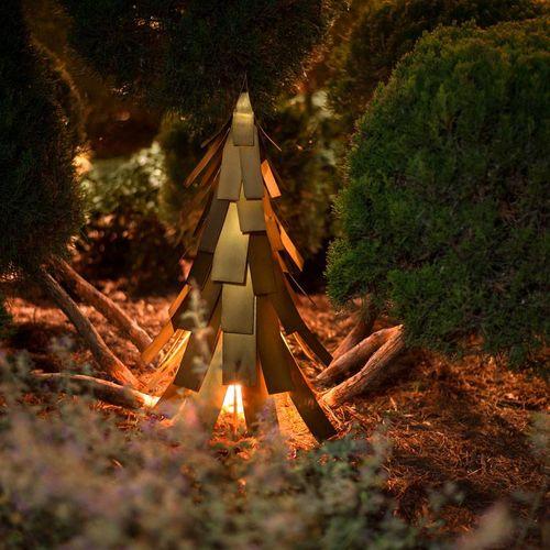 Evergreen Luminary