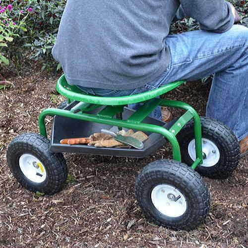 How Tractor Seat Plant Growing : Tractor seat scoot from jackson perkins