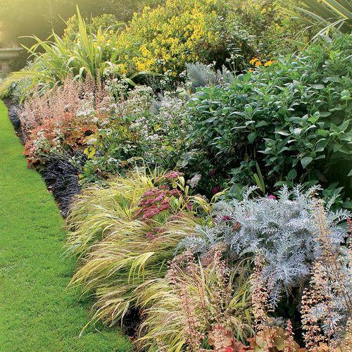 Landscape Design Service Deposit - 200 sqft.