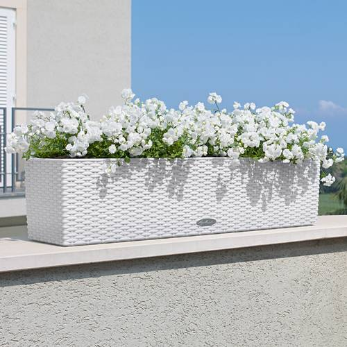 Lechuza White All in One Balconera Cottage Self Watering Planter