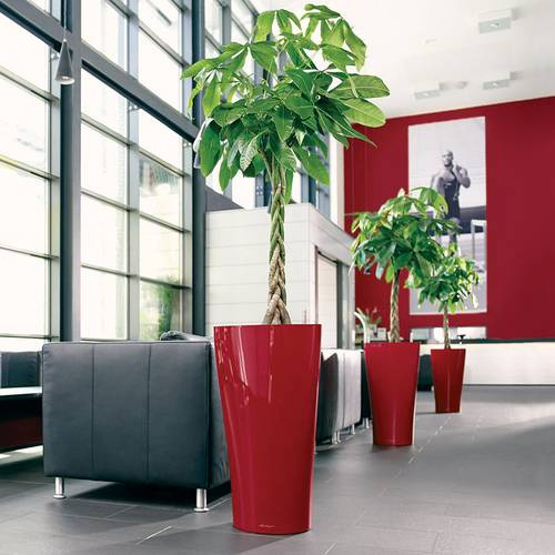 Lechuza Scarlet Red All in One Delta Self Watering Planter