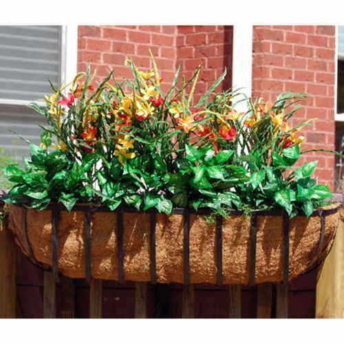 Newport Window Box