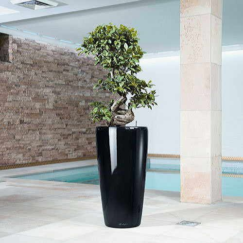 Lechuza 30 inch All in One Rondo Self Watering Planter