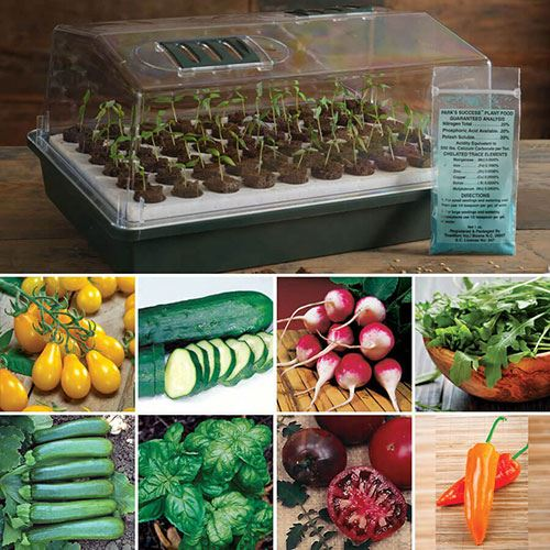 Bio Dome & Seed Kit Collections