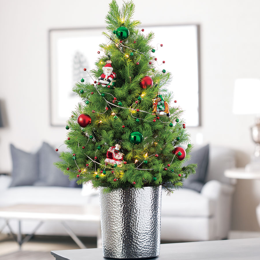 radko christmas tree - Live Christmas Tree