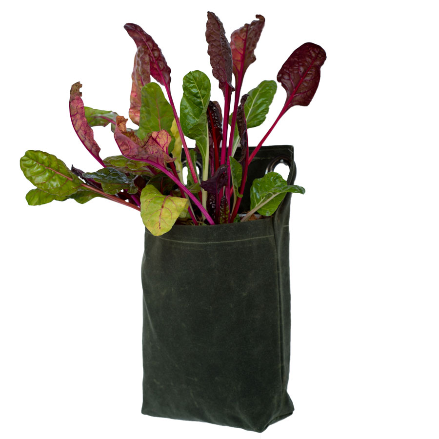 Minimalist Growpack - Small/Forest