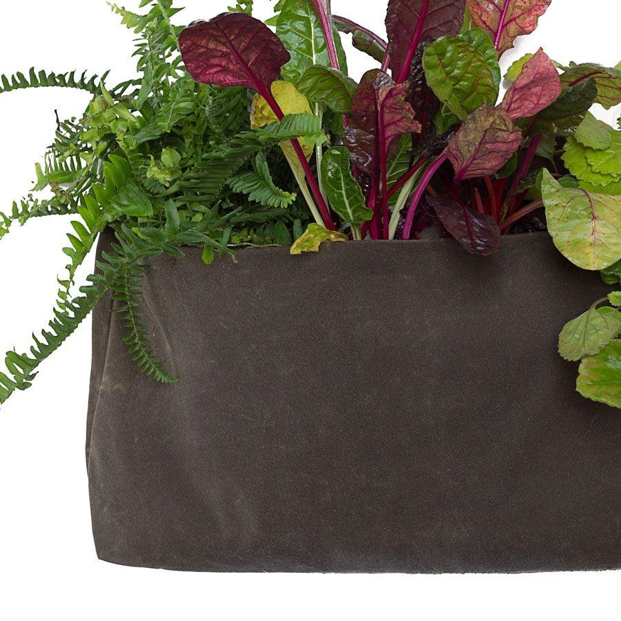 Minimalist Growpack - Large/Clay