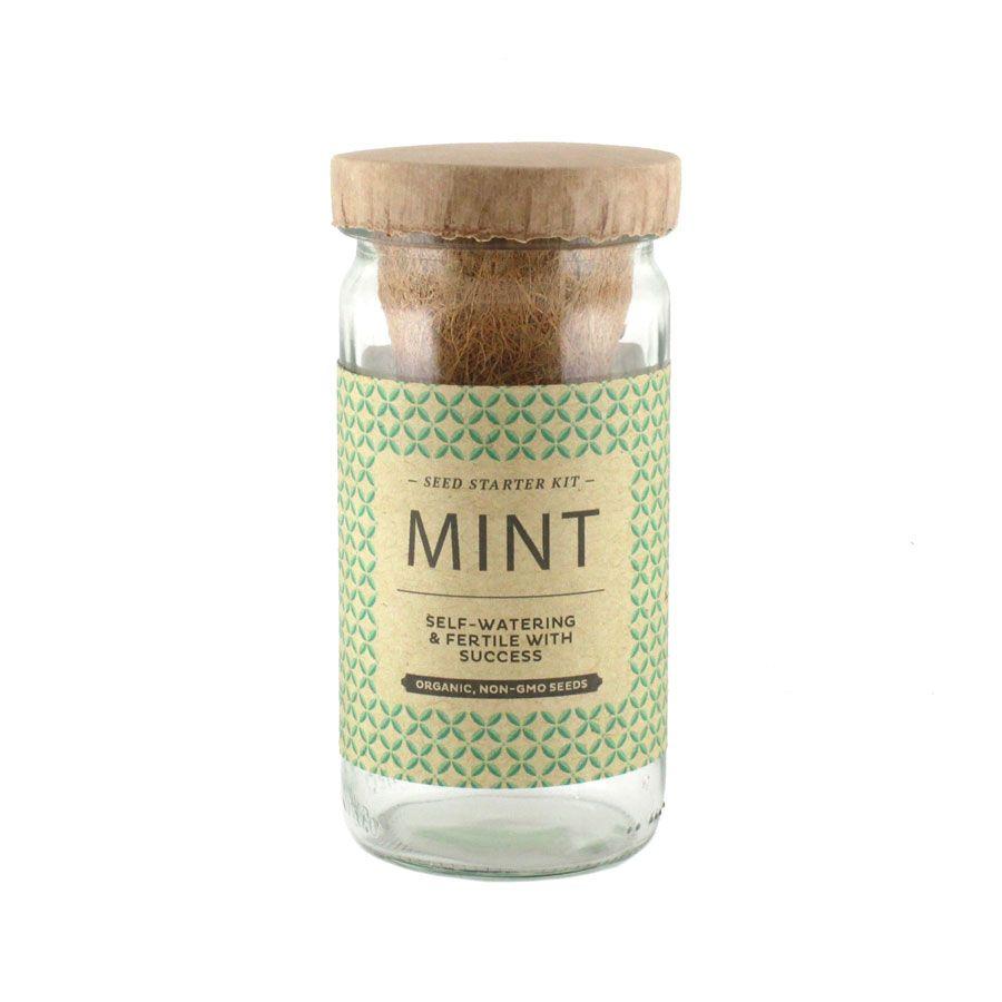 Cocktail Seed Starter Kit