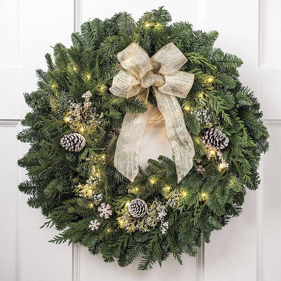 24-inch Snowfall Splendor Evergreen Wreath with Lights Image