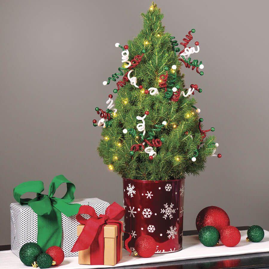 Holiday Magic Tree Image