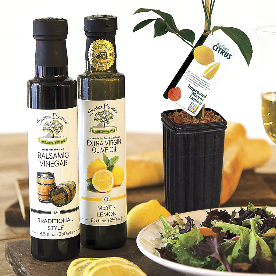Zesty Lemon Lovers Tree Gift Set