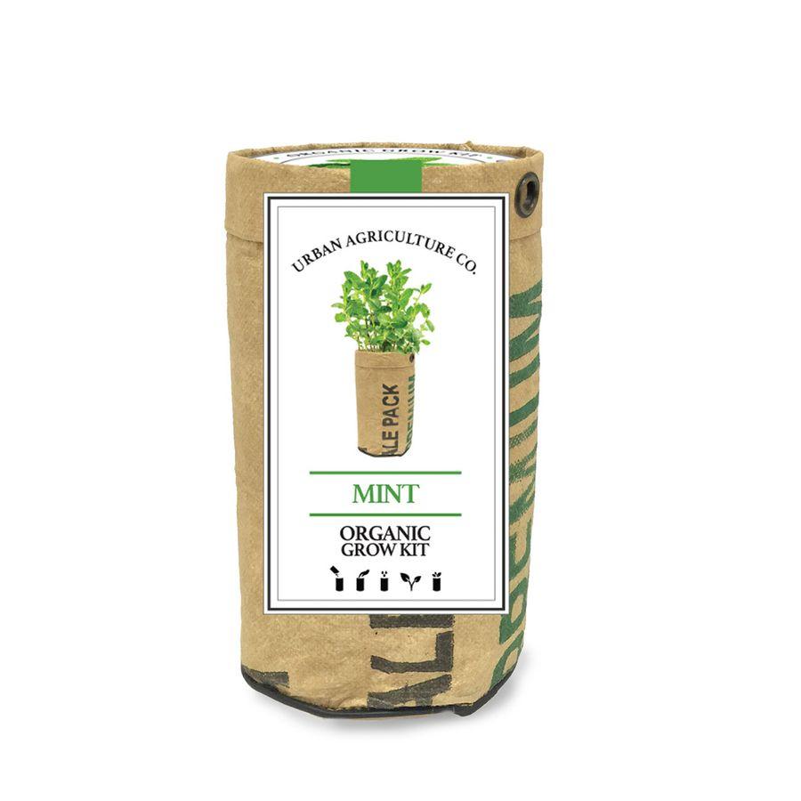 Mint herb Garden Grow Kit