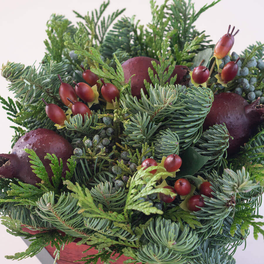 Red Pomegranate Evergreen Gift