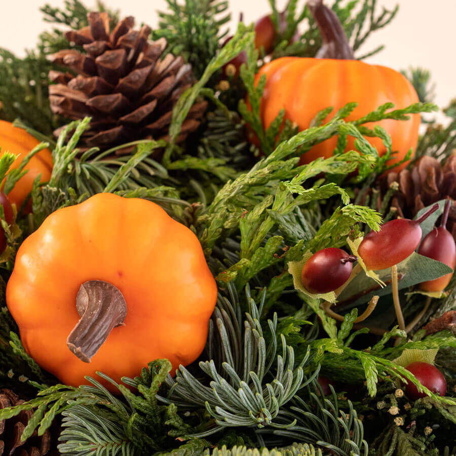 Harvest Evergreen Gift