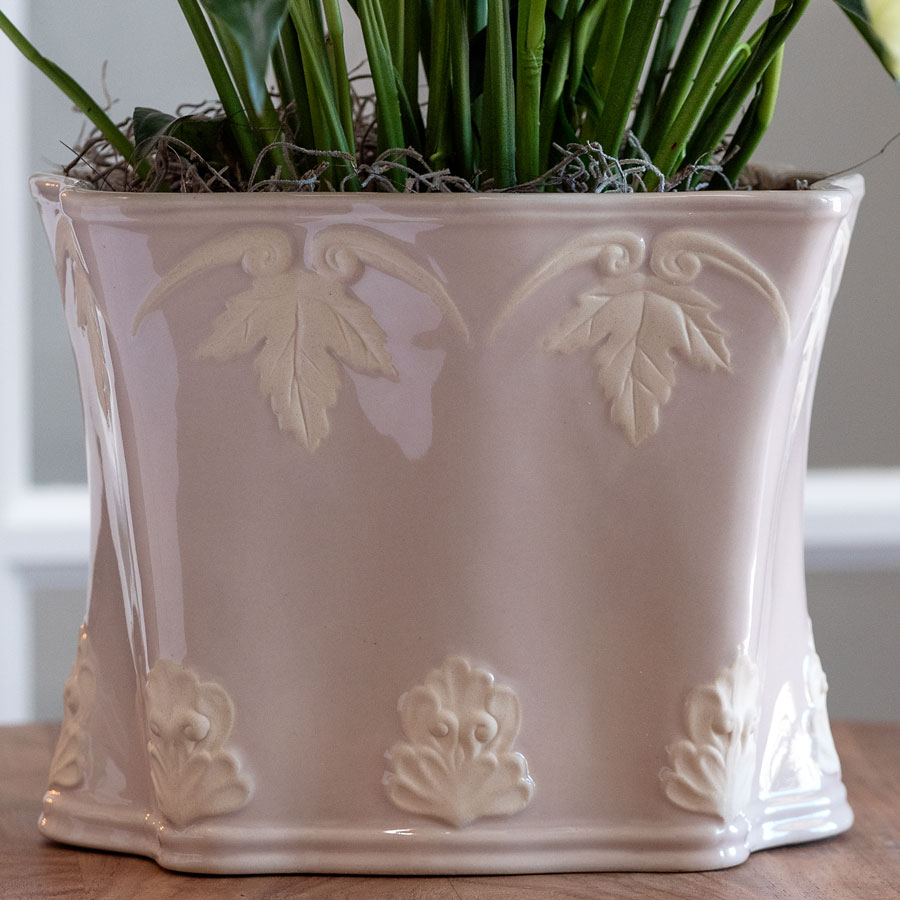 Perfect Peace Lily in Pink Container