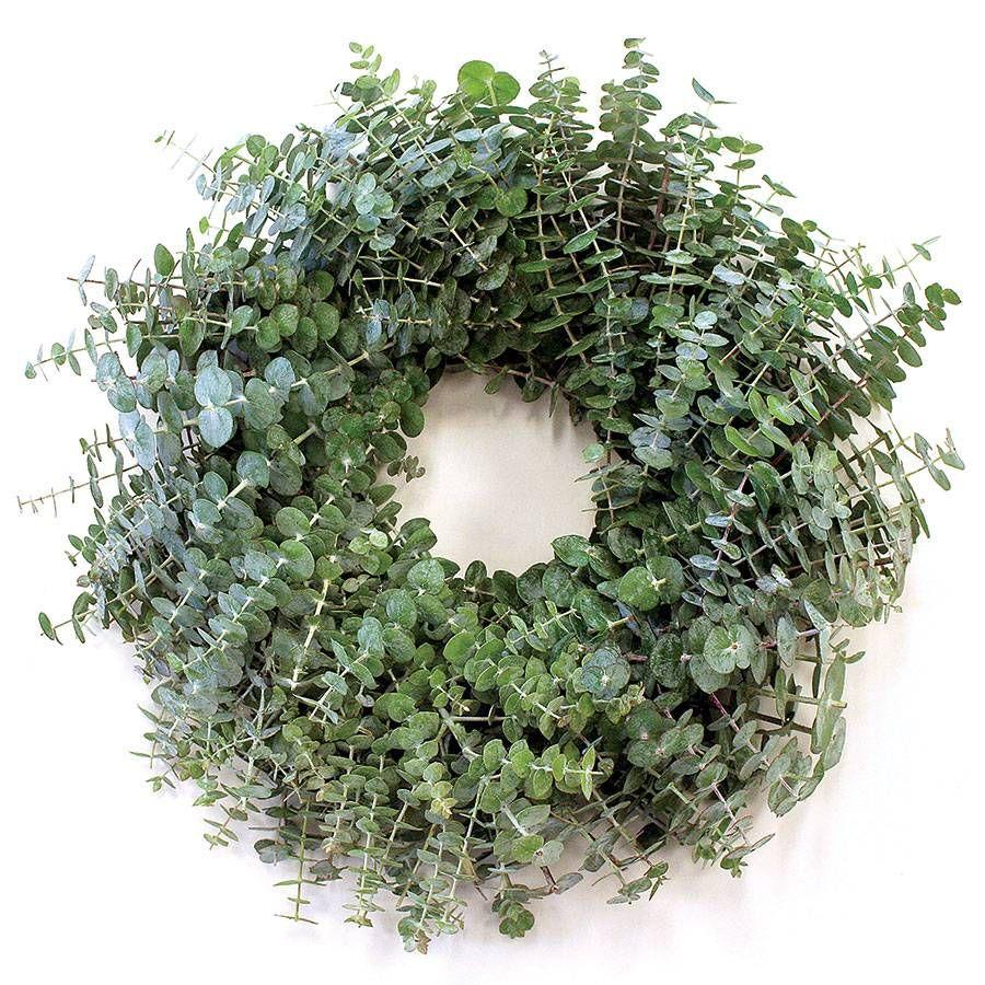 Eucalyptus Wreath Image