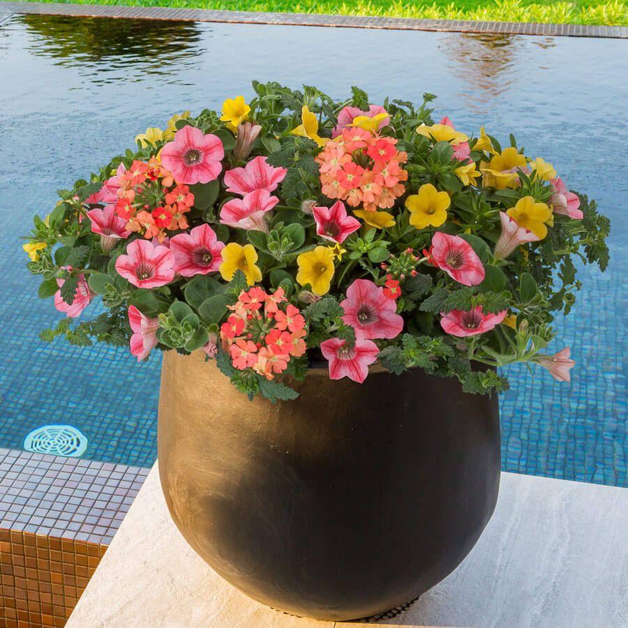 Blooming Block Kwik Kombos™ Beach Bum™ Image