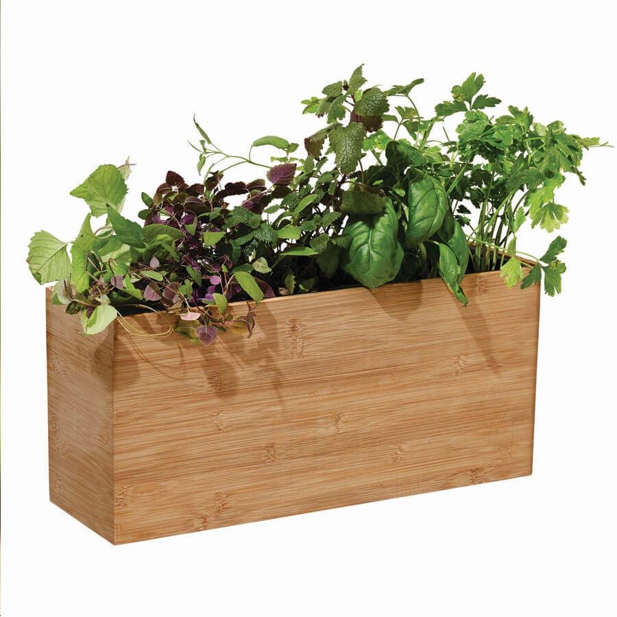 Modern Sprout Smart Hydroplanter Image