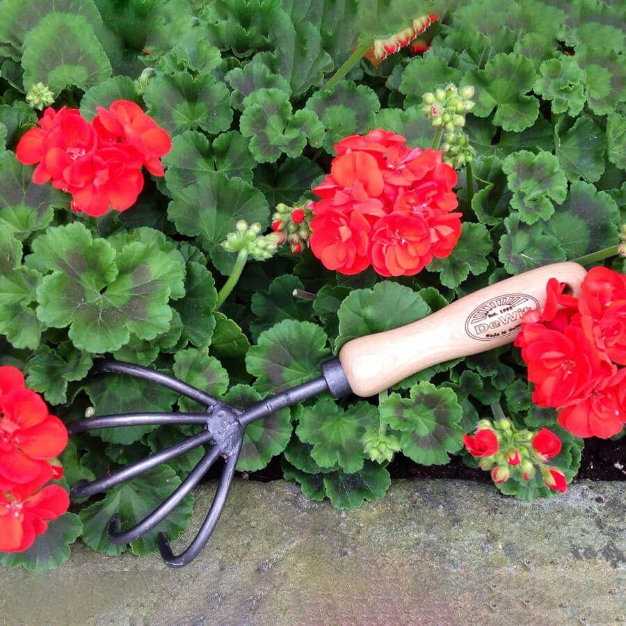 DeWit 5-Tine Cultivator Image