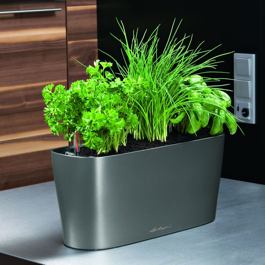 Lechuza white all in one delta self watering windowsill planter - Lechuza self watering planter ...