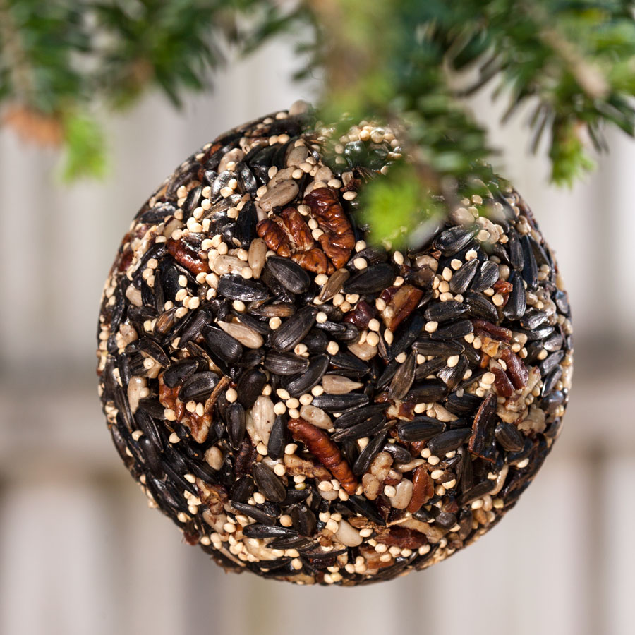 Christmas Birdseed Ornaments, Set of 3