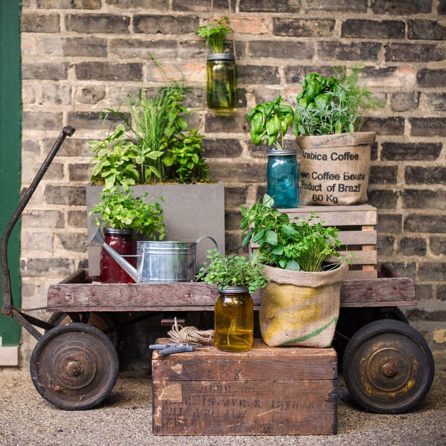 Italian Herb Jar Kit