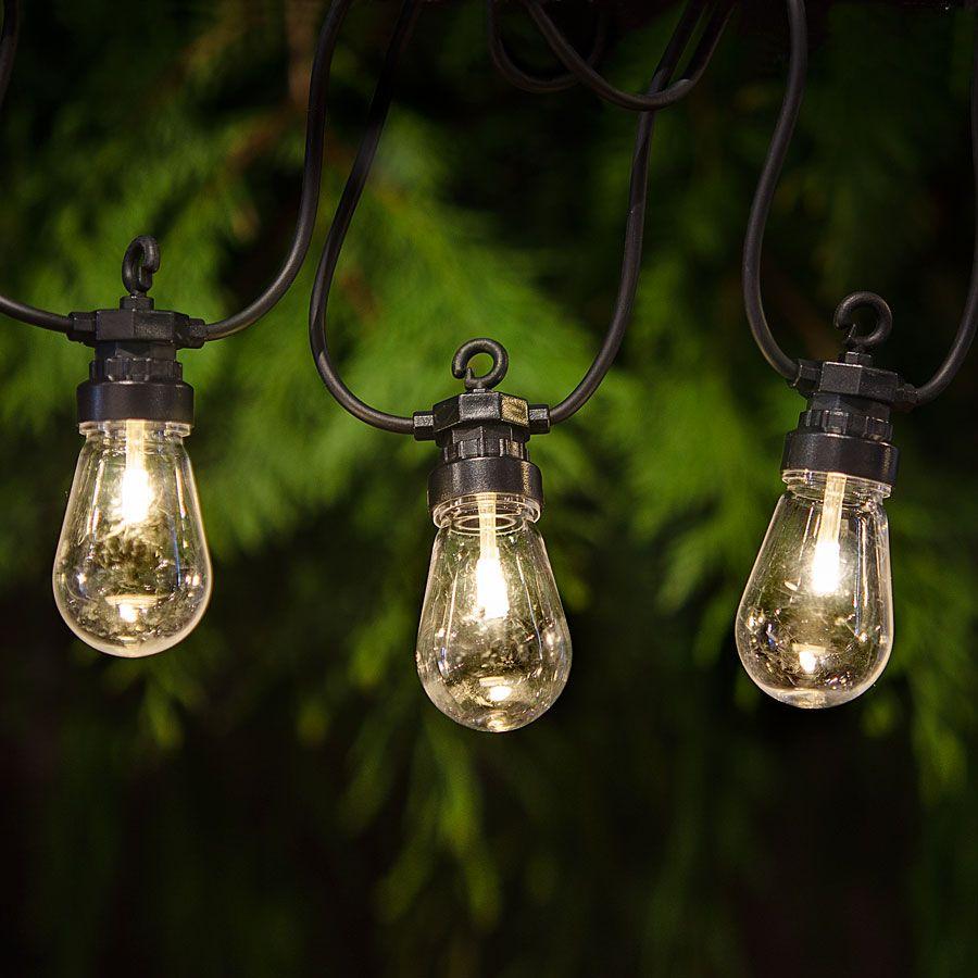 Garden party string lights from jackson perkins outdoor indoor party lights aloadofball Gallery