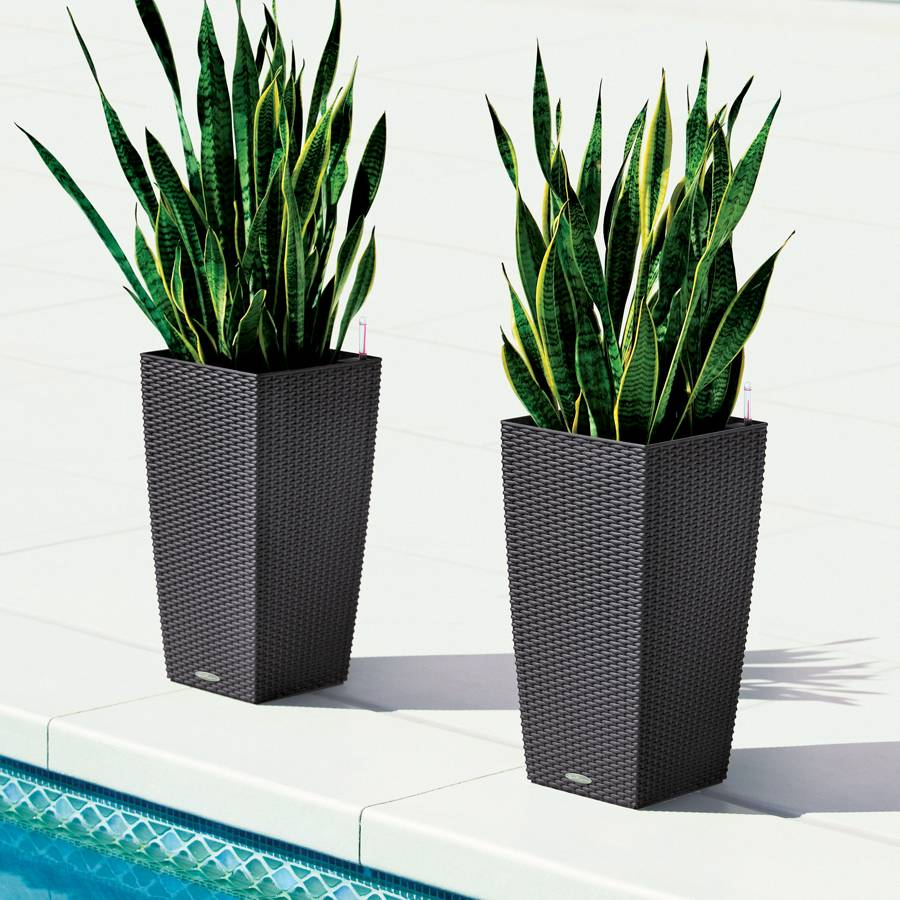 Lechuza granite all in one cube cottage self watering planter - Lechuza self watering planter ...