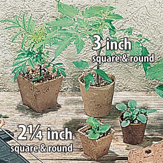 Square Jiffy Pots