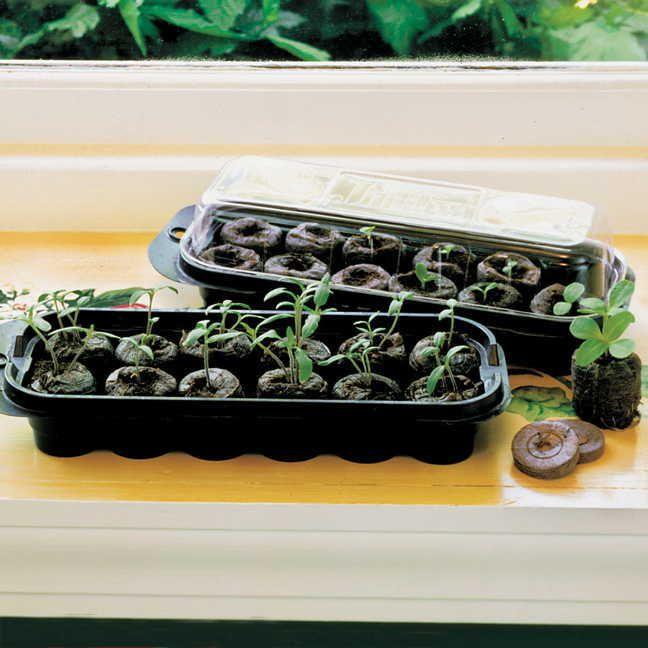 Jiffy® Windowsill Greenhouse and Jiffy-7® Refills Image
