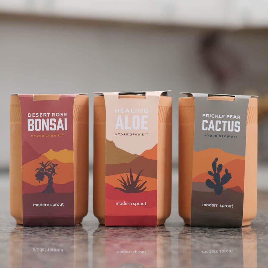 Terracotta Grow Pot Plant Kits Image